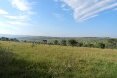 A beautiful landscape in Akagera National Park.